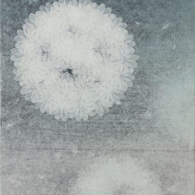[A0594-0002] B1711