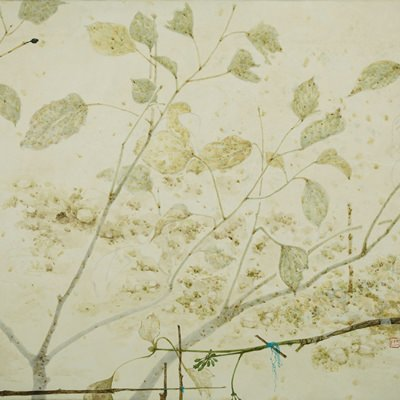 [A0610-0003] 황칠나무12
