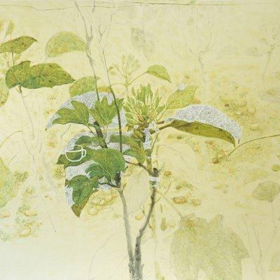 [A0610-0022] 비오는날 황칠나무 3