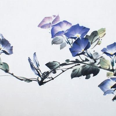 [A0612-0027] 호기심-나팔꽃