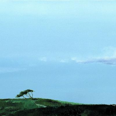 [A0621-0001] 꿈꾸는 나무1