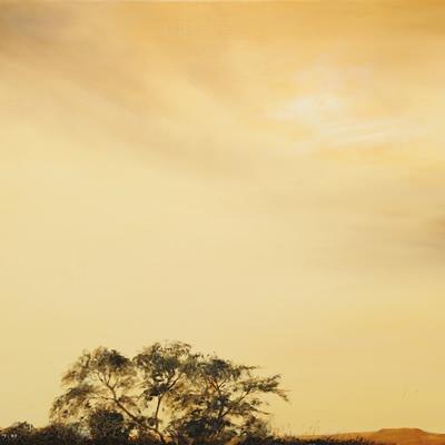 [A0621-0014] 사막에 숲이 보인다1