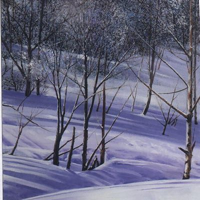 [A0621-0050] 겨울숲으로 가다1