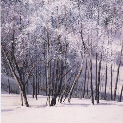 [A0621-0053] 겨울숲으로 가다4