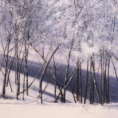 [A0621-0054] 겨울숲으로 가다5