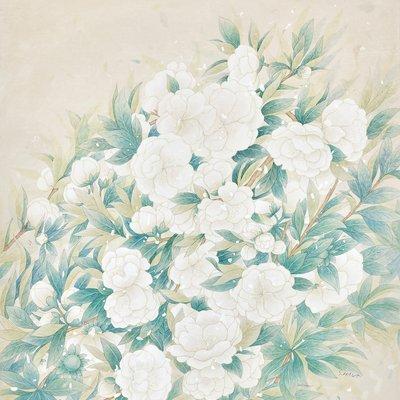 [A0650-0019] White Peach Blossom