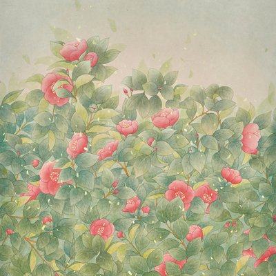 [A0650-0020] Camellia