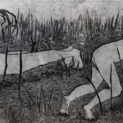 [A0673-0054] Grassland2