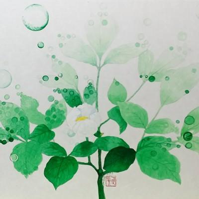 [A0676-0011] 식물1-2