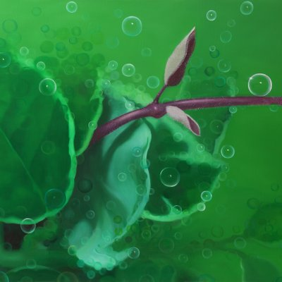 [A0676-0043] 식물3
