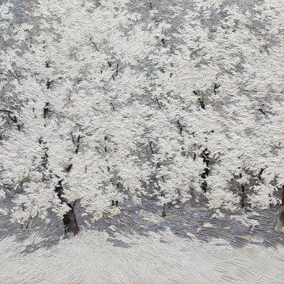 [A0692-0029] 아름다운순간-눈꽃