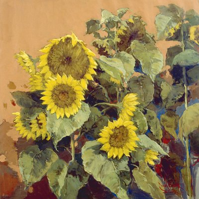 [A0706-0119]  Sunflower 1