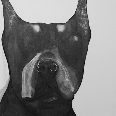 [A0709-0001] Black Dog Series_Dobermann
