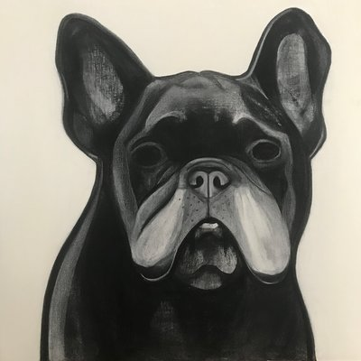 [A0709-0017] Black dog series_French bulldog