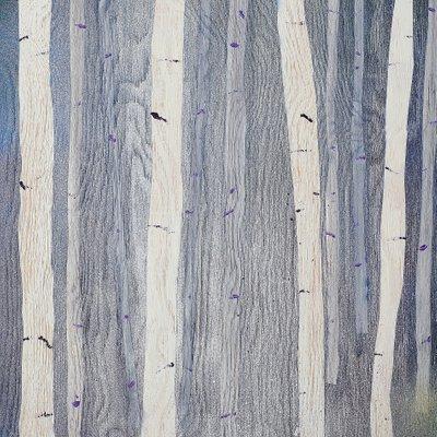 [A0712-0167] 자작나무