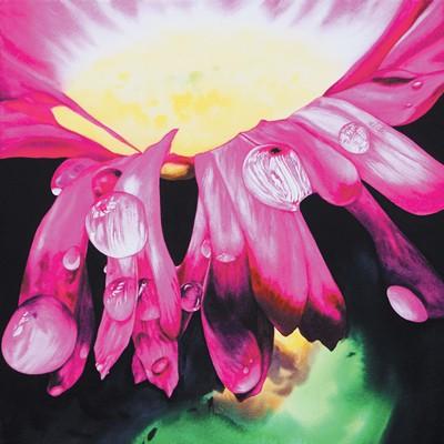 [A0729-0006] 분홍 물방울