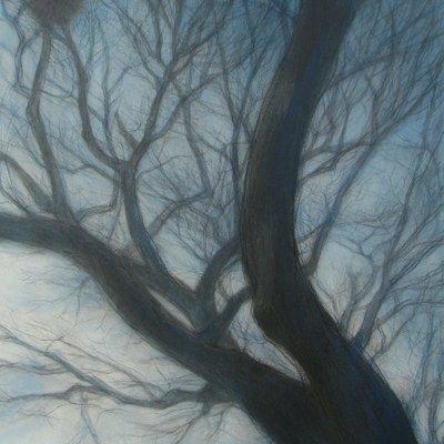 [A0755-0033] 충렬사 나무