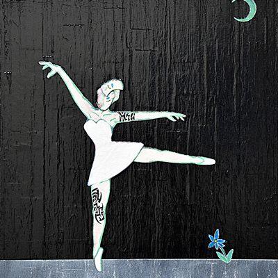 [A0760-0017] swan#10