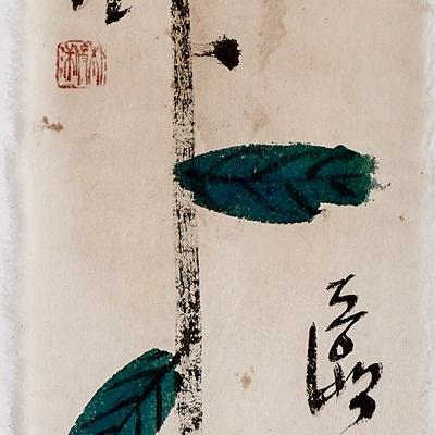 [A0770-0041] 동백꽃 사랑