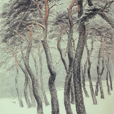 [A0834-0003] 송운(松韻)(Pine tree energy)