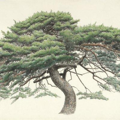[A0834-0057] 송운(松韻, Pine tree energy)