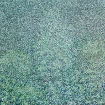 [A0851-0004] 숲 인상