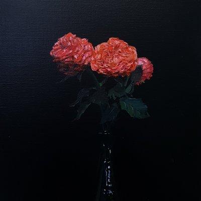 [A0851-0009] 검정배경의 꽃