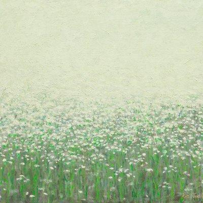 [A0851-0027] 개망초