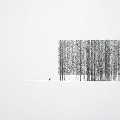 [A0853-0002] 침묵의 숲