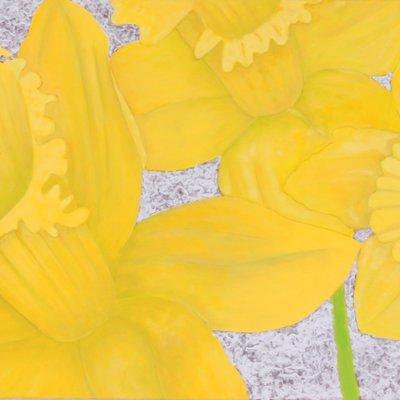 [A0863-0125] 꽃- 수선화