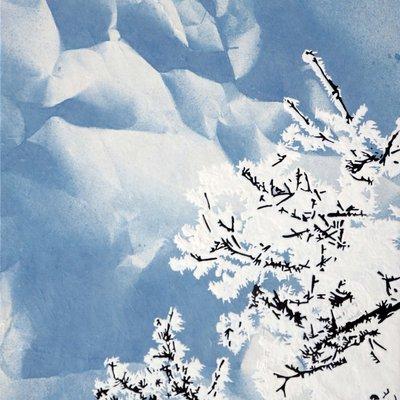 [A0864-0009] 설지(雪枝)3