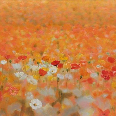 [A0865-0008] Natural Image(Poppy garden)
