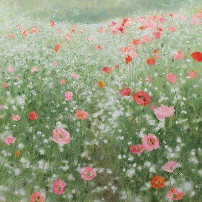 [A0865-0016] Natural Image(Poppy garden)