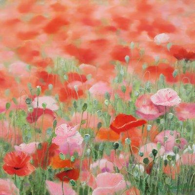 [A0865-0036] Natural Image(Poppy garden)