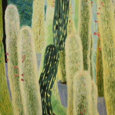 [A0936-0016] Cactus