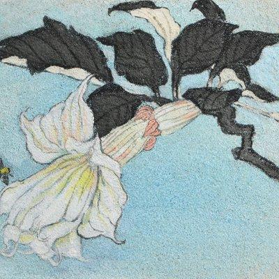 """[A0938-0018] """"꽃, 그리고 바람의 안무"""""""