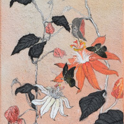 """[A0938-0027] """"꽃, 그리고 바람의 안무"""""""