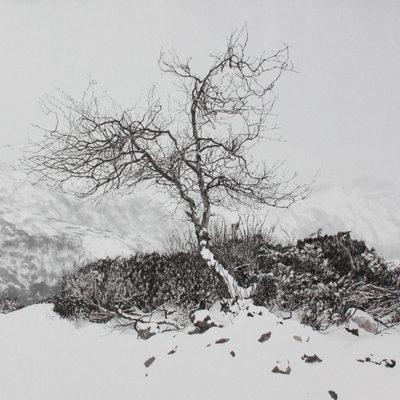 [A0939-0007] 獨(독)-고원에서