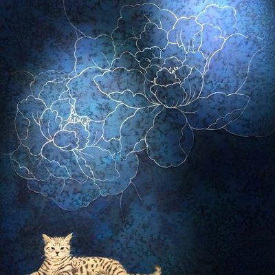 [A0970-0010] 나는 고양이로소이다