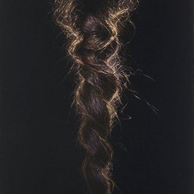 [A1009-0001] Braid 2010