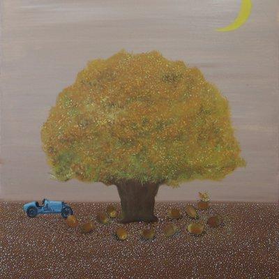 [A1041-0005] 달빛 아래 상수리나무