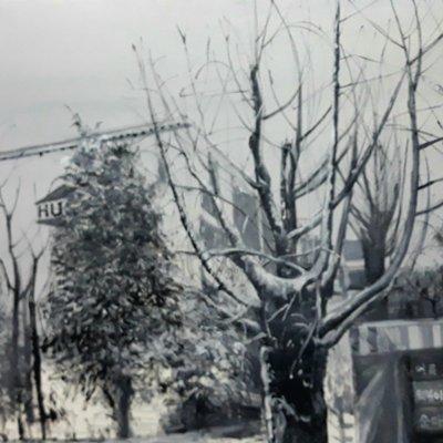 [A1041-0024] 겨울의 일상