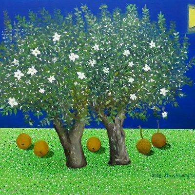 [A1041-0027] 두그루의 배나무