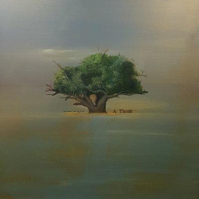 [A1041-0069] 가시나무