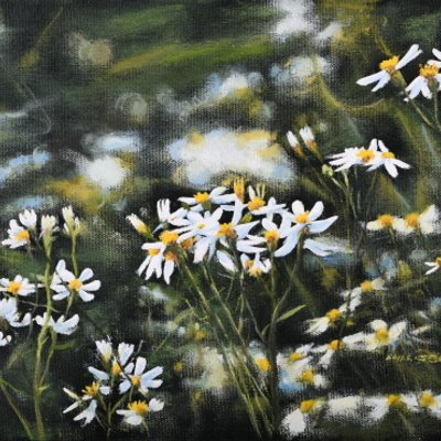 [A1044-0035] 기청산 들꽃