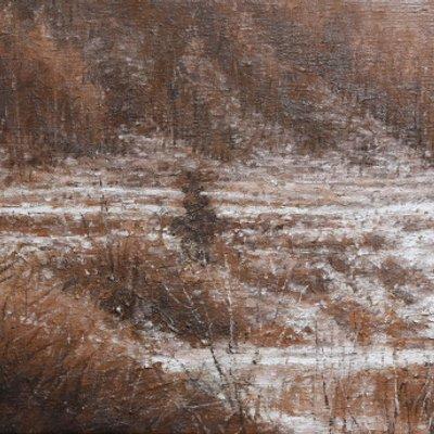 [A1044-0108] 소금강의 겨울