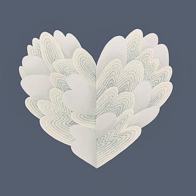 [A1049-0002] Heart-1