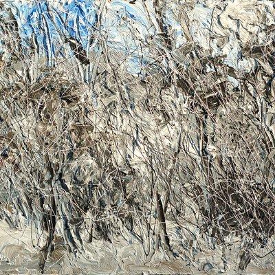 [A1050-0096] 조립된 풍경 - 지리산15(겨울숲길)