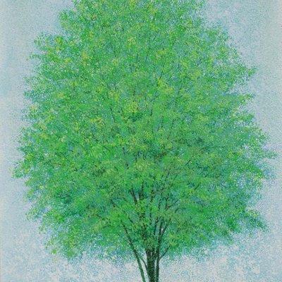 [A1073-0040] 초록의 계절