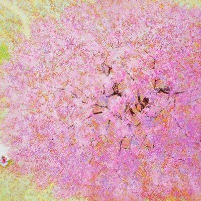 [A1073-0062] 기다린 봄